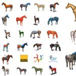 Horses for Causes